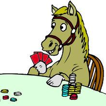 HORSE regler
